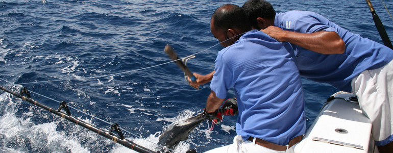 Kiawah island sc real estate the cassina group for Kiawah island fishing